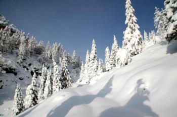 Winterlandschaft auf dem Monte Zoncolan